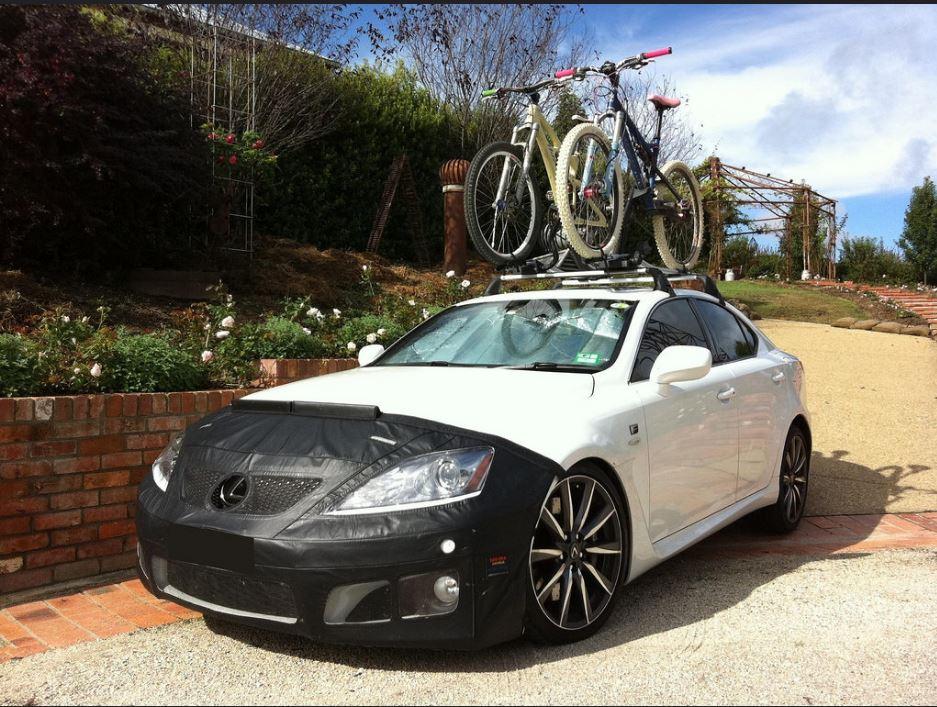 F with bikes.JPG